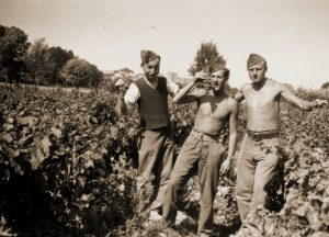 Militairen van het 59Li aan het werk in de wijngaarden van Rieux-Minervois.