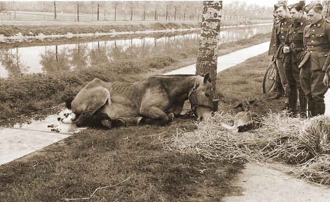 Remontedepot_Brasschaat_1939_1940 (13)